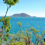 Fitzroy Island une île nature et farniente à découvrir durant un séjour en Australie